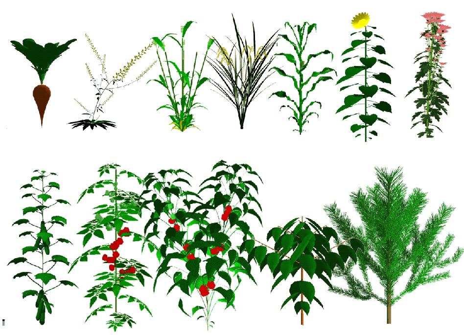 galerie_plantes_square
